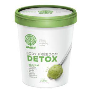Sorvete Cremoso Detox – 500g